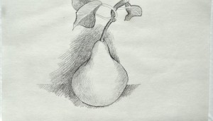 Pear-drawing-by-Kay-Morris-for-PR-745x425