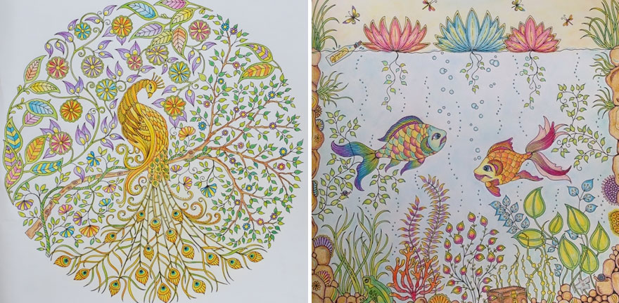 Coloring Books For Adults And Children