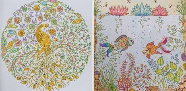 coloring-books-for-adults-johanna-basford-13__880
