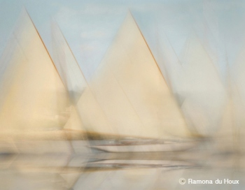 maine sail