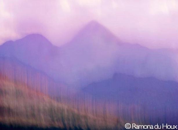 Purple Mts. Majasty