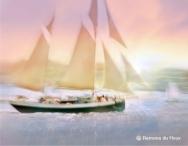 Sweat Sail