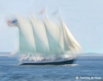 Dream Sail